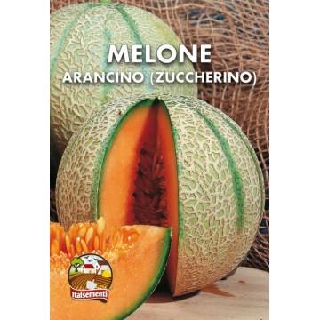 Melone Arancino (Zuccherino)