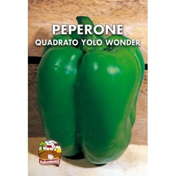 Peperone Quadrato d'Asti Verde
