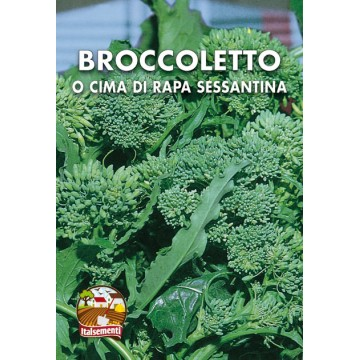 Broccoletto o Cima di Rapa Sessantina
