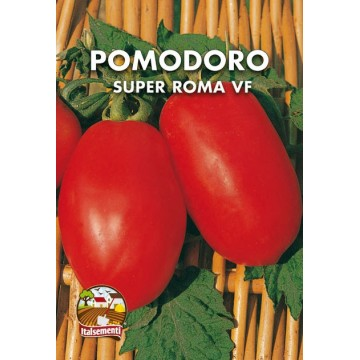 Pomodoro Super Roma VF
