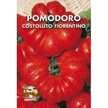 Pomodoro Costoluto Fiorentino