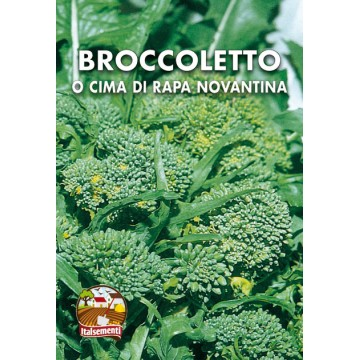 Broccoletto o Cima di Rapa Novantina