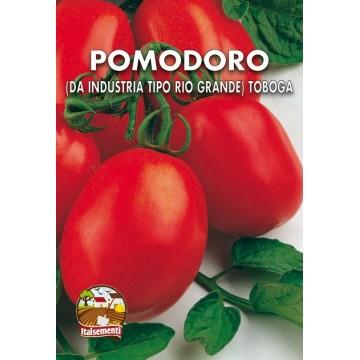 Pomodoro Tobago (ex Rio...