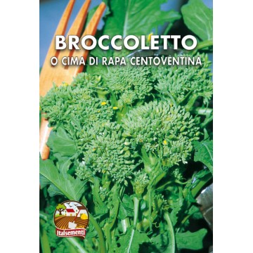 Broccoletto o Cima di Rapa Centoventina