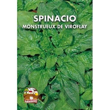 Spinacio Mostrueux De Viroflay