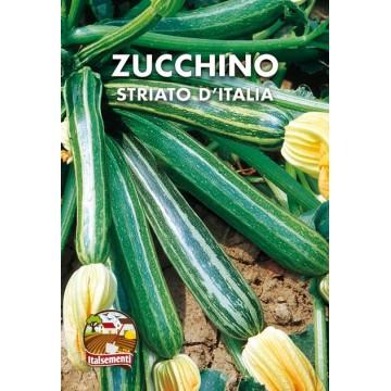 Zucchino Striato d'Italia