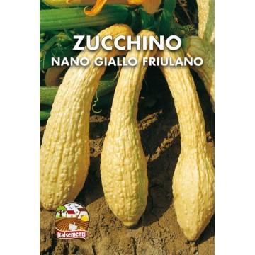 Zucchino Nano Giallo Friulano
