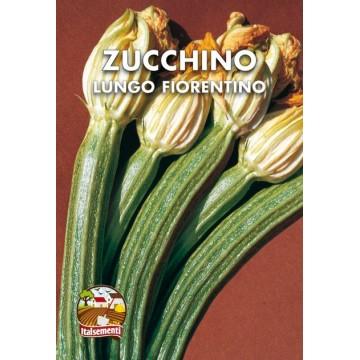 Zucchino Lungo Fiorentino
