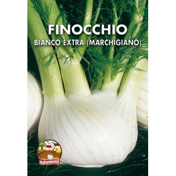 Marchigiano Fennel