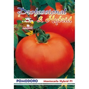 Pomodoro Montecarlo Hybrid F1