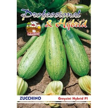 Zucchino Greyzini F1
