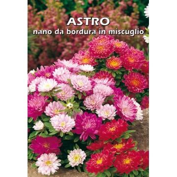 Astro Nano da Bordura in...