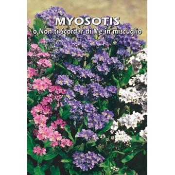 Myosotis o Non Ti Scordar...