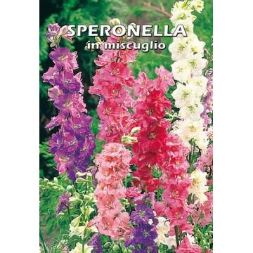 Speronella in Miscuglio