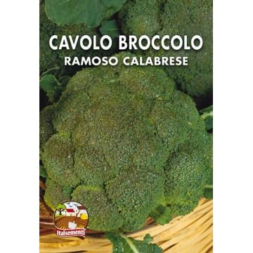 Cavolo Broccolo Ramoso Calabrese