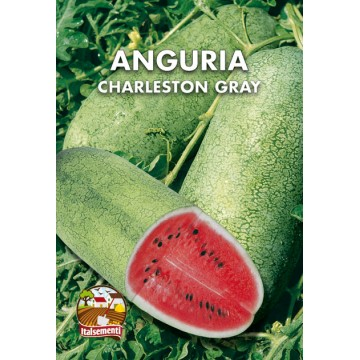 Anguria Charleston Gray