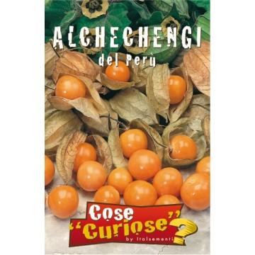 Alchechengi o Alkekengi del Perù