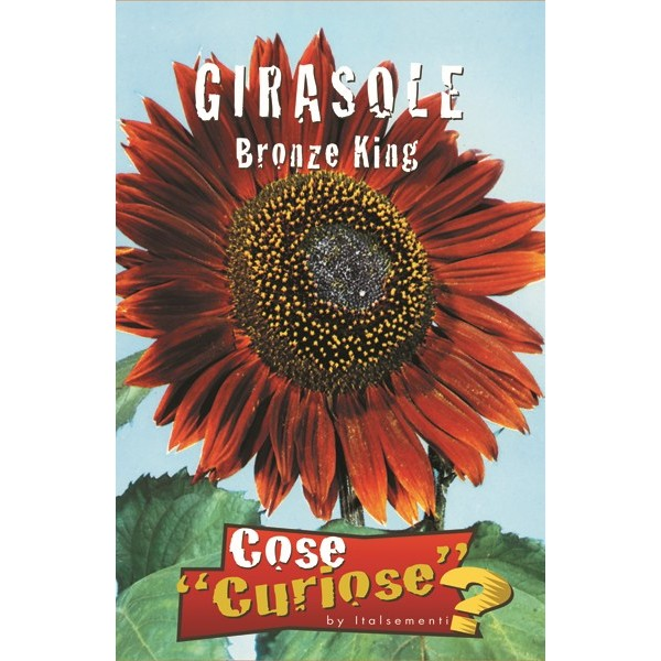 Girasole Bronce King