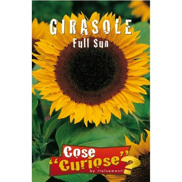 Girasole Full Sun