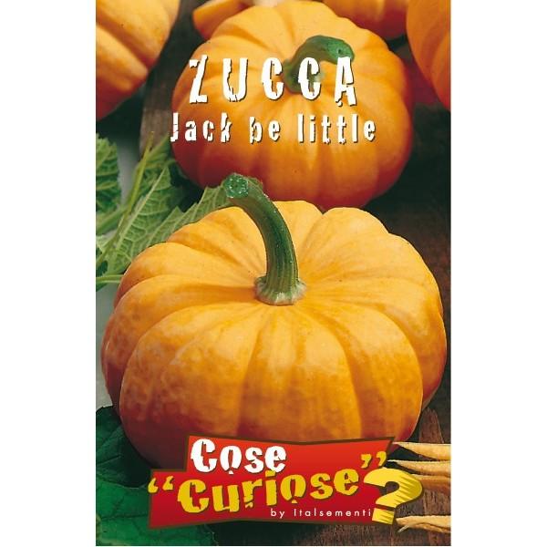 Zucca Jack Be Little