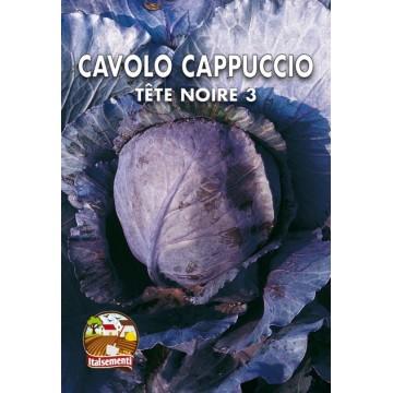 Cavolo Cappuccio Tete Noire 3