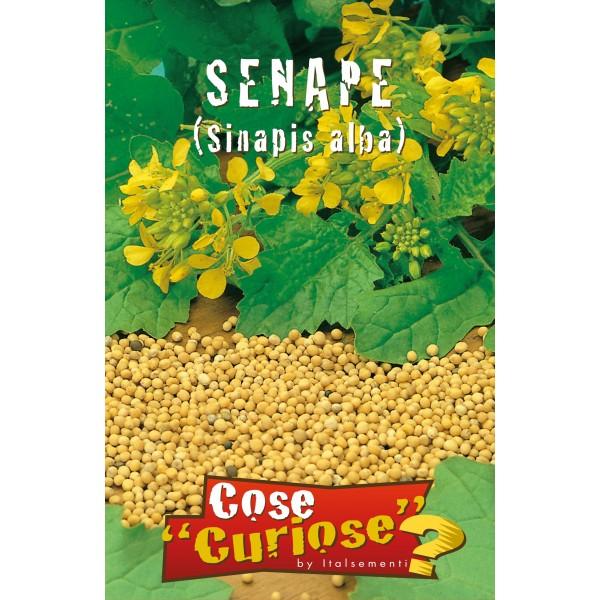Senape