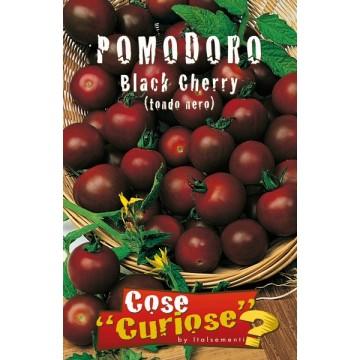 Pomodoro Black Cherry (Tondo Nero)