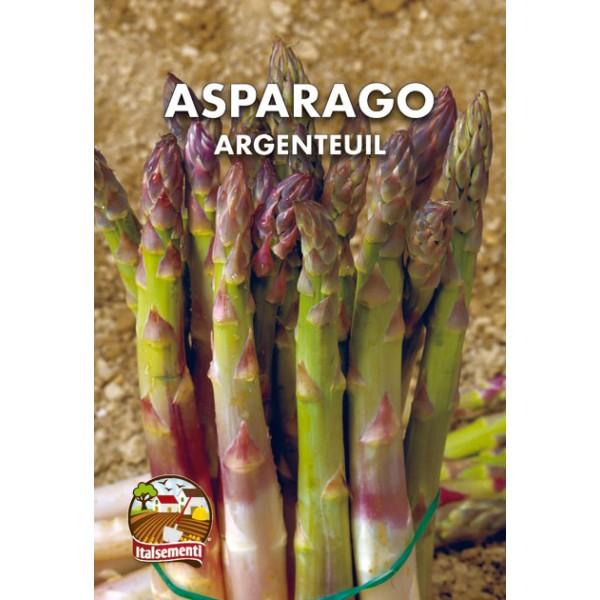 Asparago Argenteuil
