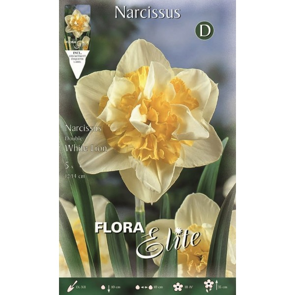 Narciso Doppio White Lion