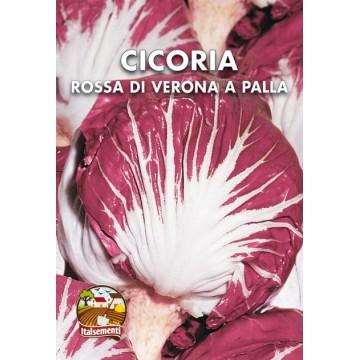 Cicoria Rossa di Verona a...