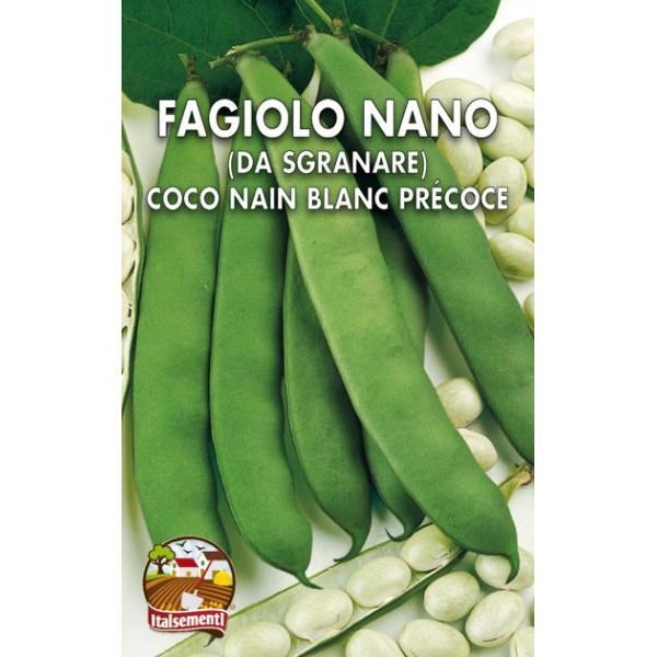 Fagiolo Nano Coco Blanc