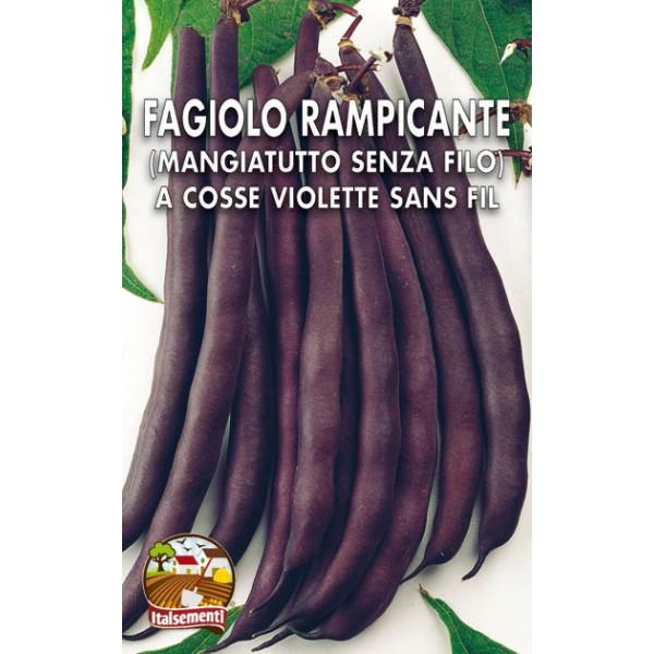 Fagiolo Rampicante Trionfo Violetto