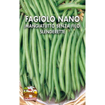 Finocchio di Napoli