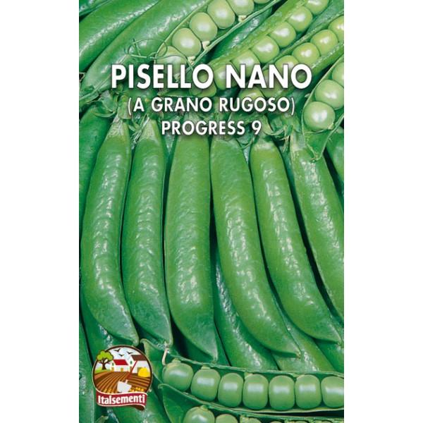 Pisello Nano Progress 9