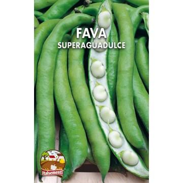 Fava Superaguadulce (Italia)