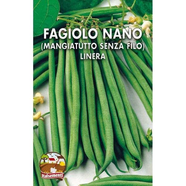 Fagiolo Nano Linera