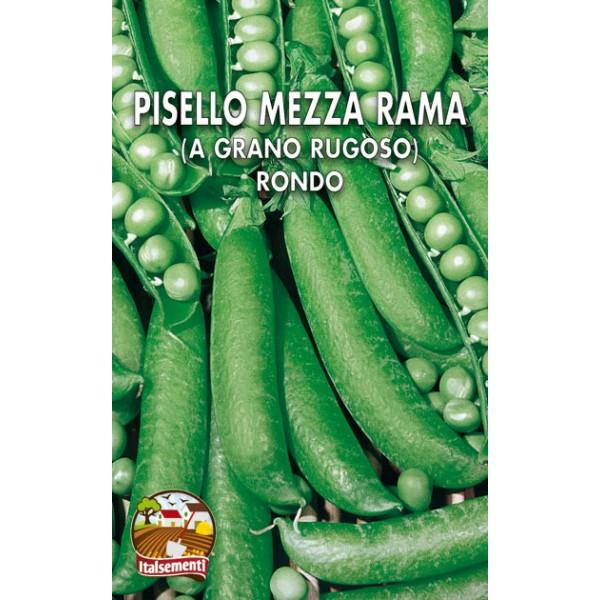 Pisello Mezza Rama Rondo