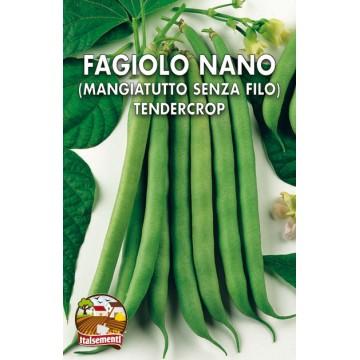 Fagiolo Nano Tendercrop