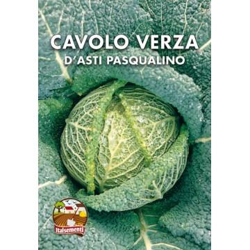 Cavolo Verza d'Asti Pasqualino