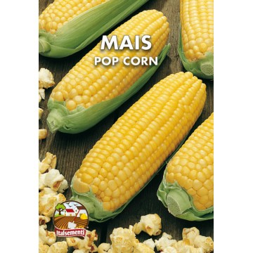 Mais Pop Corn