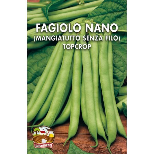 Fagiolo Nano Top Crop