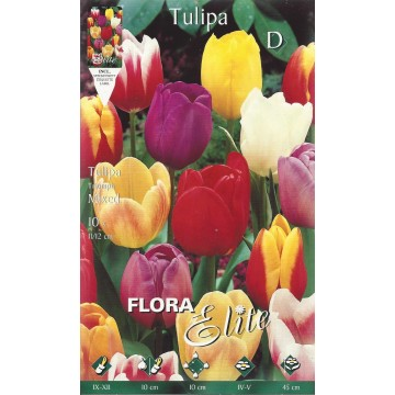 Tulipano Triumph Mix