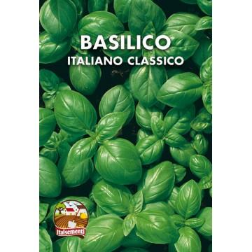 Basilico Italiano Classico (Genovese)