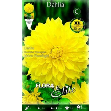 Dhalia Kelvin Floodlight