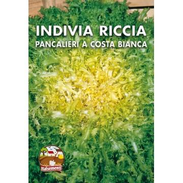 Indivia Riccia Pancalieri a...